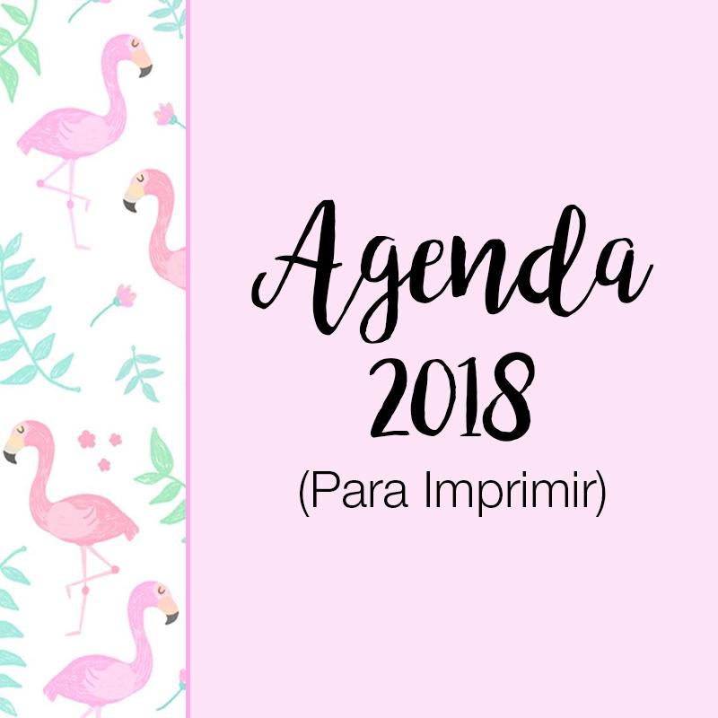 agenda, agenda 2018, agenda para imprimir, planner, planner para imprimir, planner 2018, dicas de organização, organização, organização pessoal